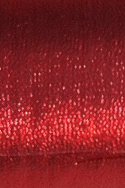 Tissue Lame' - Red - Gilbert's Fabric